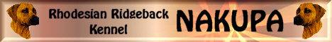 Alles über unseren Ridgeback Kennel Nakupa